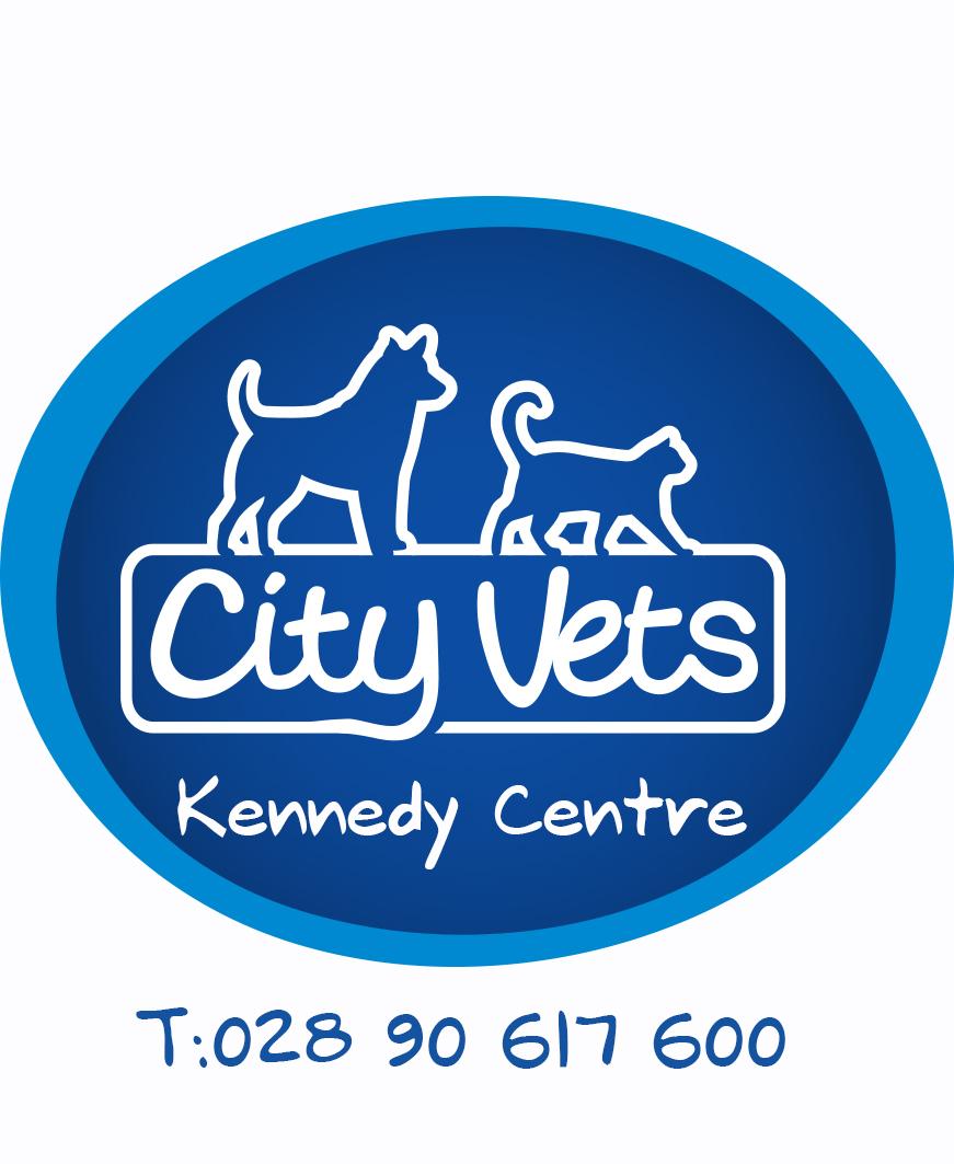 Christmas City Vet.City Vets Ravenhill Road