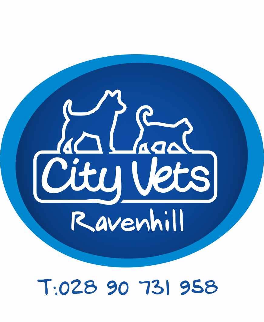 City Vets Ravenhill Road